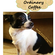 Nacho Ordinary Coffee, etc.