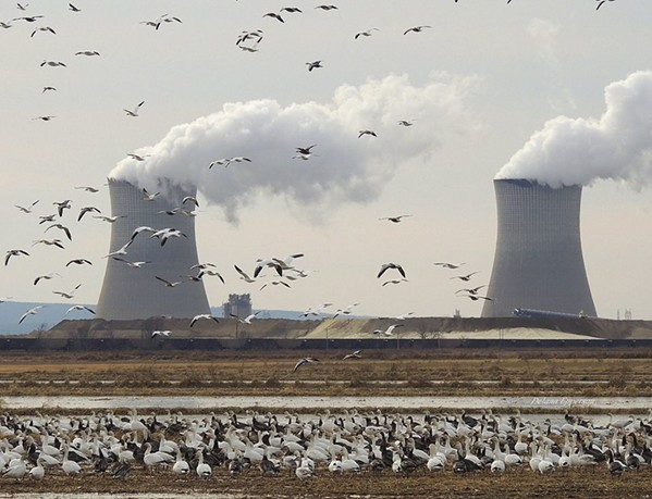Entergy's Independence Power Plant near Newark, Ark. is polluting the air in Memphis, according to Sierra Clubs in Tennessee and Arkansas. - KENNETH RORIE - FACEBOOK