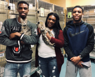 The 7,000th and 7,001st adoptions of 2018 were brother kittens who were adopted by the Miles family. - MAS