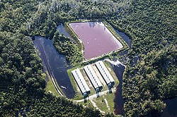Two larges lagoons hold animal waste behind three barns on a factory farm. - TENNESSEE CLEAN WATER NETWORK