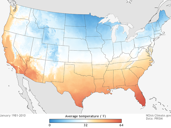 Average January temperatures across the contiguous United States (1981-2010). Much of the northern tier of the country has temperatures well below freezing in January. - NATIONAL OCEANIC AND ATMOSPHERIC ADMINISTRATON
