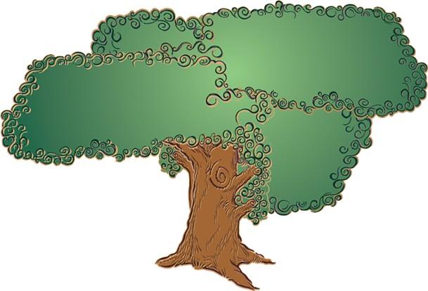 coverstory_3_tree.jpg