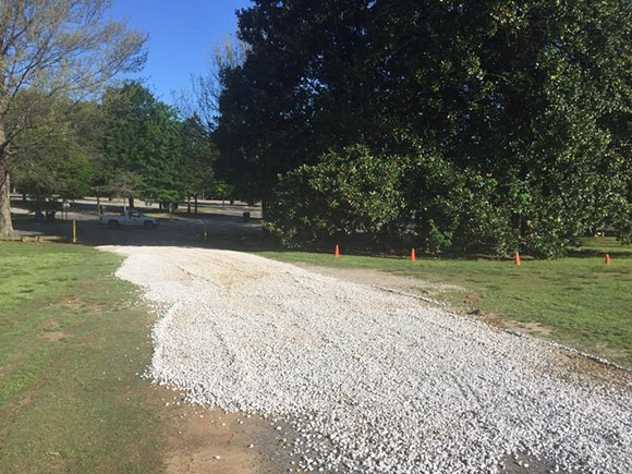 New gravel was laid on the Greensward to shore up the pathway used for overflow parking by the Memphis Zoo. - FACEBOOK