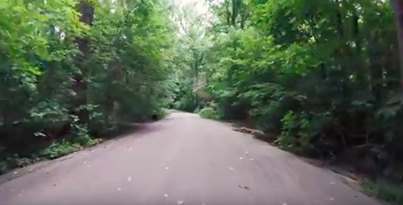 A screenshot of the zoo's YouTube video to zoo members. - MEMPHIS ZOO