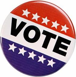 1271688329-vote_2.jpg
