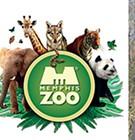 Zoo Suit