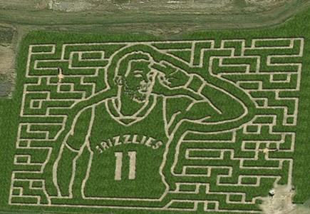 Mid-South Corn Maze