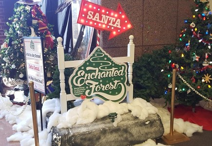The Enchanted Forest Festival of Trees