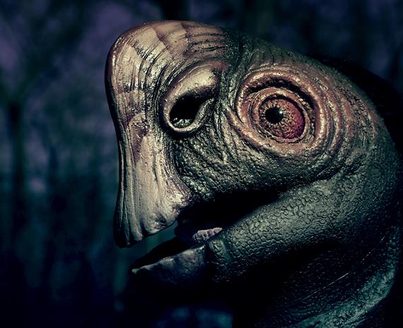 dinosafterdark.jpg