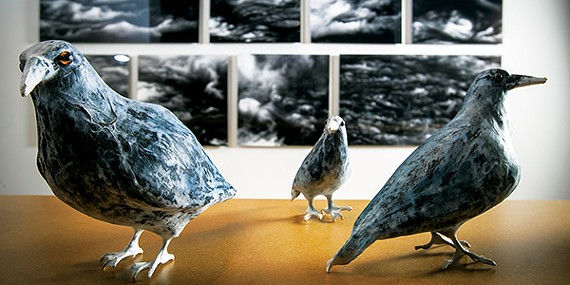 Strange birds of oddment[s]