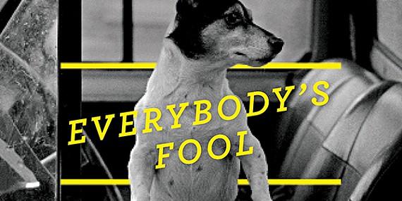 book_everybodysfool-mag.jpg