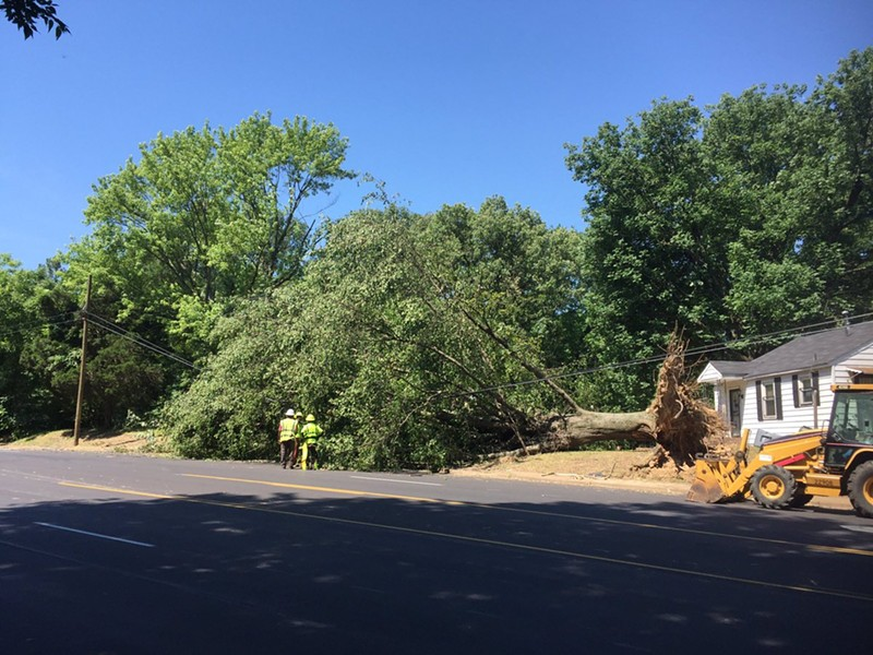 Public Works crew clearing tree in Frayser - CITY OF MEMPHIS