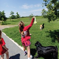 Memphis Ranked on Dog Parks