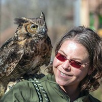 Meeman-Shelby Forest State Park's First Day Hike Festival is January 1st
