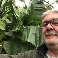 Clark Hooser and his banana trees.