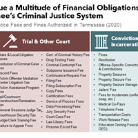 Fines and fees can accrue at all levels of the Criminal Justice process
