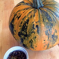A Pumpkin Power Primer