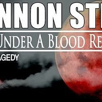 Shannon Street: Echoes Under A Blood Red Moon Documentary Explores A Memphis Tragedy