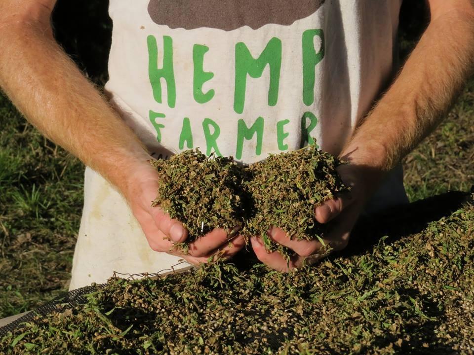 Tennessee Wants More Hemp Farmers   News Blog