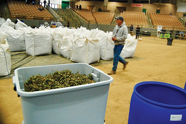 Hemp Haven: An Auction and Market Bring the Plant Into the