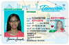 A sample Tennessee driver license.