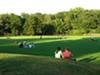 Overton Park Greensward