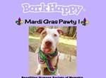 BarkHappy Mardi Gras Pawty