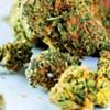 City Council Considers Backing Legislation on Cannabis