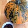 A Pumpkin Power Primer