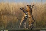 5e555e3a_tigers.jpg