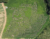 2015-aerial-corn-maze.jpg