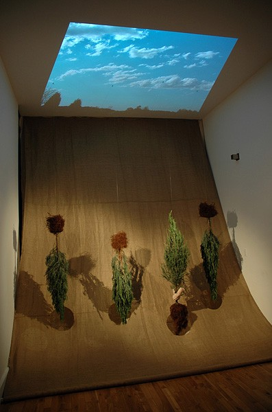 Uproot/Re-root, 2009