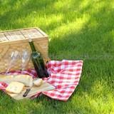 1cd2208a_picnic_1.jpg