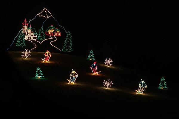 Hines Park Christmas Lights