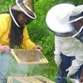 Detroit Black Community Food Security Network's Growing Determination