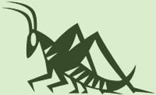 summergrasshopperjpg