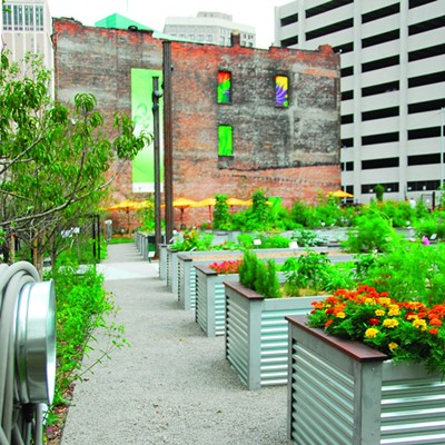 Urban Farms and Gardens of Detroit