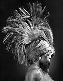 big_03_hairwarsbookjpg