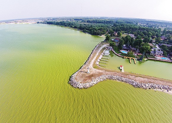 Experts say climate change is attributable to the growth of harmful algae blooms in Lake Erie, which can blanket the body of water with a thick, pea-green blanket. - PHOTO COURTESY OF SHAWN RAMES, EXPLORINGNWO.COM