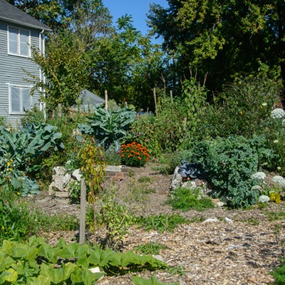 18 Images of The Sanctuary, A Sustainable Urban Garden in Detroit