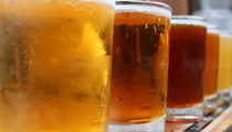 The best of Ann Arbor beer
