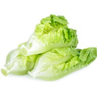 Another Michigander sickened by romaine lettuce E. Coli outbreak