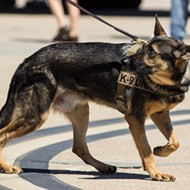 Detroit officer that left K-9 in a hot vehicle is under investigation
