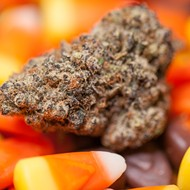 Happy Halloweed! Here are some upcoming marijuana-infused Halloween events in Detroit