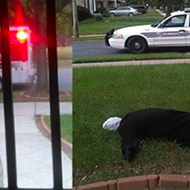 Putting a dummy face down in your yard in Detroit will draw police interest, sadden neighbors