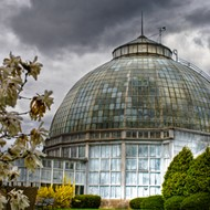 Mobile app for Belle Isle debuts