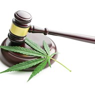 Michigan's Marijuana Regulatory Agency is now taking social equity program applications online