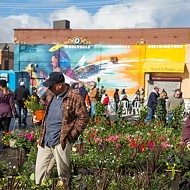 Eastern Market's Flower Day grows into extended 'Flower Season' event