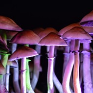 Ann Arbor declares September Psychedelics Awareness Month —and we're tripping