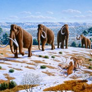Start-up raises money to resurrect woolly mammoth, Trump wants to resurrect Confederate general, and more
